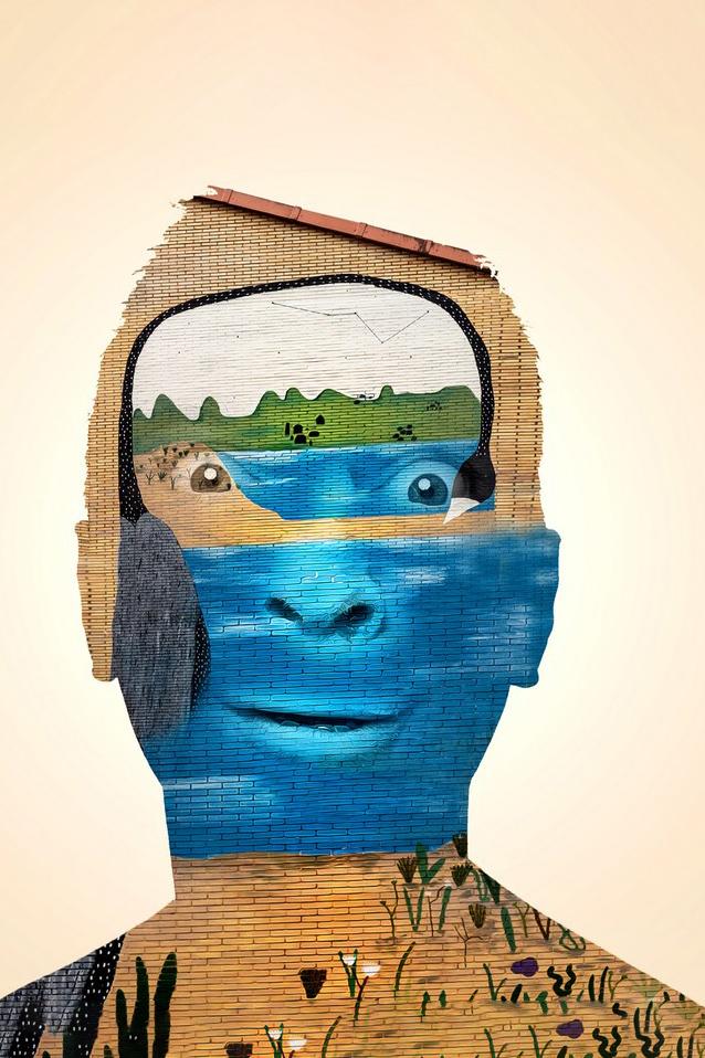 Carballo Street Art - Roberto Rey