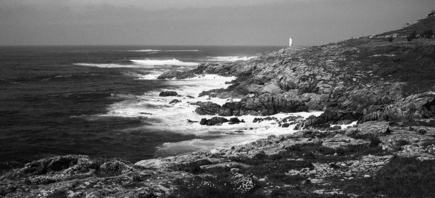 Roncudo - Camiño dos Faros - Roberto Rey