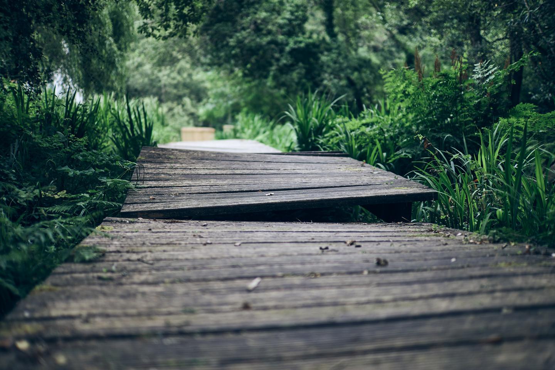 Molinos del Río Negro - Camiño dos Faros Etapa 6 - Roberto Rey Fotografía